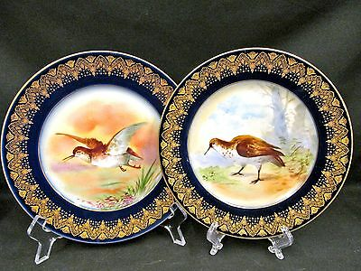 Jp Limoges Hand Painted Wild Bird Set Of 2 Plates Cobalt Blue & Gold Gilt Work