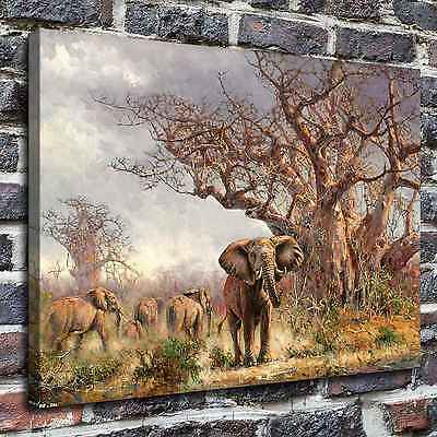 "12""x16""The elephant Paintings HD Print on Canvas Home Decor Wall Art Pictures"