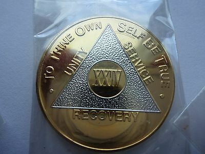 AA Alcoholics Anonymous Bi-Plate Silver/Gold Coin Chip 24 Years Medallion Token