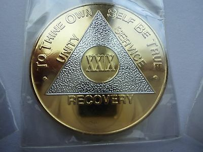 AA Alcoholics Anonymous Bi-Plate Silver/Gold Coin Chip 29 Years Medallion Token