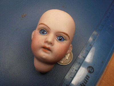 big bisque  doll Head with glass eyes 1890-  Germany