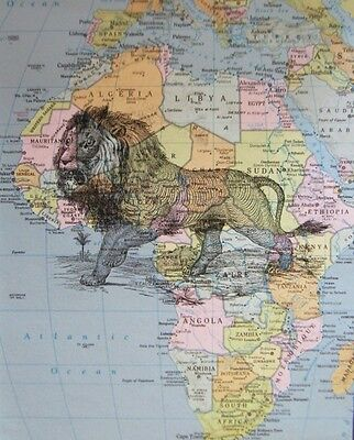 "Lion on Vintage Map of Africa Print - 8"" x 10"""