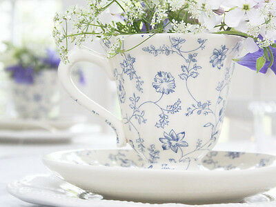Shabby Chic Cream Blue Floral French Cup Saucer Tea Party Christmas   Antique