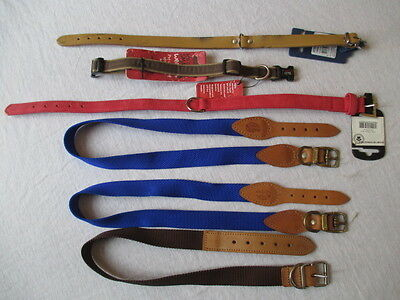 Job Lot of 6 Dog Collars Mixed Sizes/Colours Ideal Resale, Rescues, Clubs