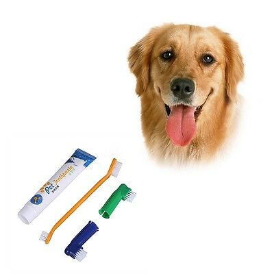 4Pcs/Set Pet Dog Puppy Cat Cleaning Toothpaste + Toothbrush + Back Up Brush