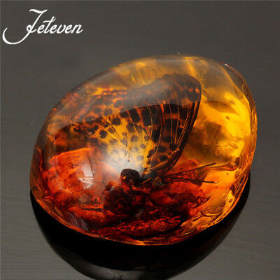 1Pc Beautiful Resin Amber Butterfly Scorpion Insect Stone Pendant Necklace