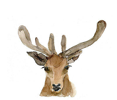 Watercolor Deer  Painting Prints Wall Art DIY Home Decor Poster Choose your Size