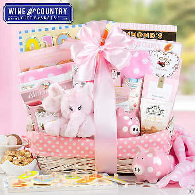 Baby Shower Gift Basket Newborn Girl Set Includes Goodies for Proud Parents NEW