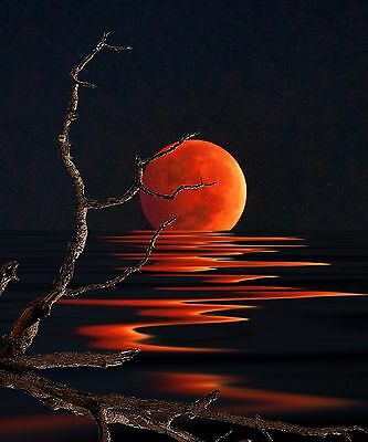 Blood Moon Reflection , High Quality Canvas /Choose your size