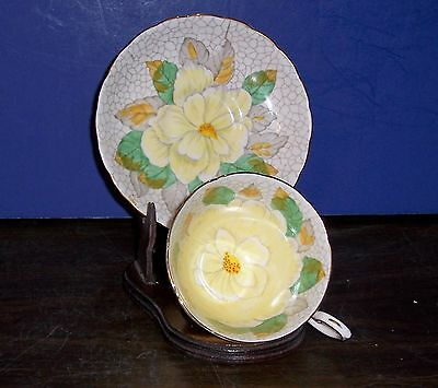 Tuscan Fancy Big Hand Painted Flower  Bone China Cup & Saucer Made In England