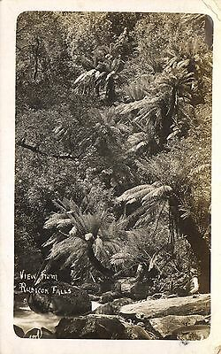 Australia,View from Rubicon Falls,Used,Old Photo Postcard