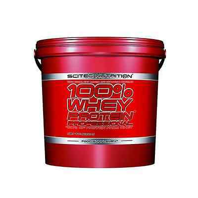 Scitec Nutrition 100% Whey Protein Professional 5000g arome VANILLE