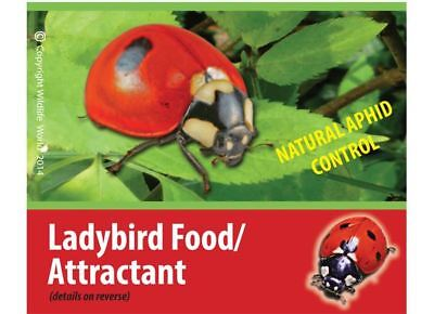Ladybird Food Attractant - Wildlife World