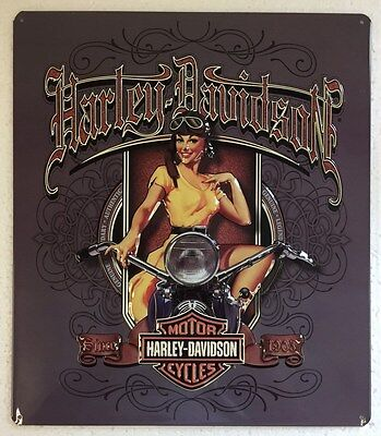 Ande Rooney HARLEY DAVIDSON OLD SCROLL BABE Girl Tin Garage HD Motorcycle Sign