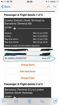 Flight ticket (Benicassim Festival) 10th-18th July w/Luggage compartment