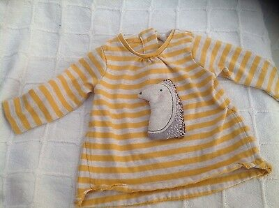 Baby girls Next long sleeve top with cute hedgehog age 0-3 months immaculate