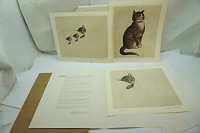 Chessie Cat Prints Chesapeake And Ohio Railway Railroad Original Portfolio
