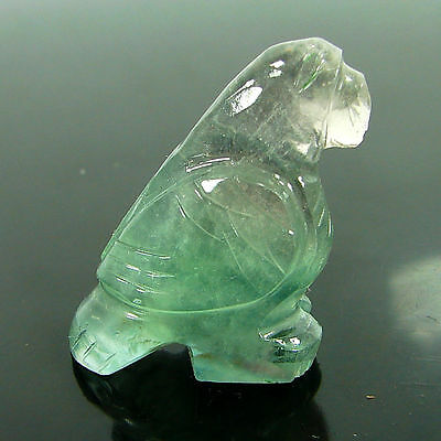 48.20 Ct Natural Fluorite Gemstone Beautiful Bird Figurine stone- RH1250