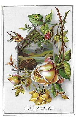 Tulip Soap Victorian Trade Card Roses & Bird 1890's