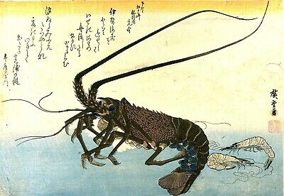 Iseebi & Ebi Crawfish Spiny Lobster Japanese Repro Woodblock Art Print Hiroshige