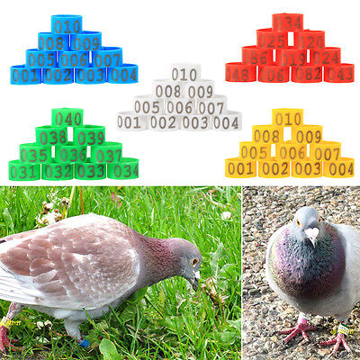 100X/Bag 16MM 001-100 Number Poultry Chickens Ducks Goose Leg Band Ring 6 Colors