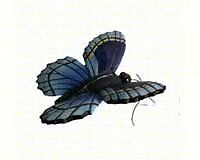 GOLD-CC52035-Clark Collection CC52035 Blue Butterfly