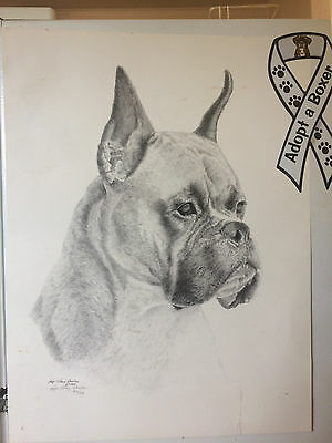 """Boxer 1999 Dog Print With Signed Signature Roger """"pidney"""" Davidson  #330/339"""