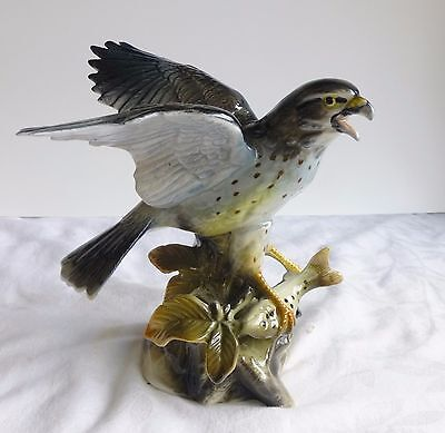 "Vintage, Bird Collection By Jsc ""hawk Catching Fish"""