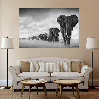 Retro Seda Cartel Poster Elefante África Decorar Pared Decoración Hogar 60×90cm