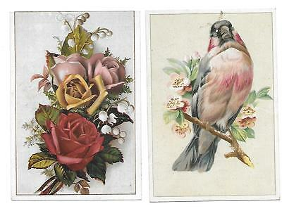 2 S. B. Thing & Co. Shoes & Boots Victorian Trade Cards Poughkeepsie N. Y. Bird