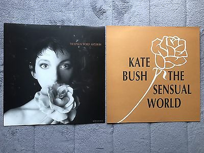 Kate Bush The Sensual World RARE promo 12 x 12 poster flat '89