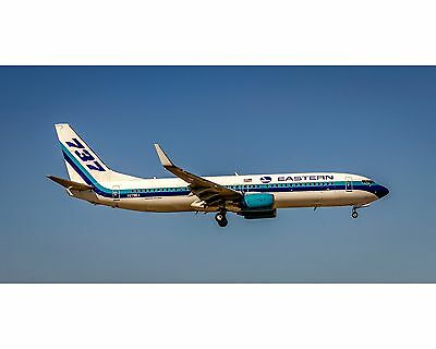 Eastern Airlines Boeing 737 Photo Poster 10x20 (APPM10005)