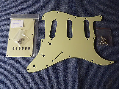 stratocaster pickguard mint green + plaque vibrato + vis neuves