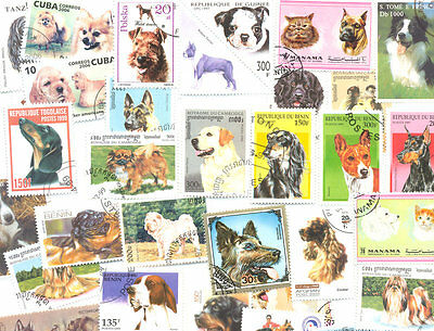 Dogs-collection 100 all different stamps mainly med-large