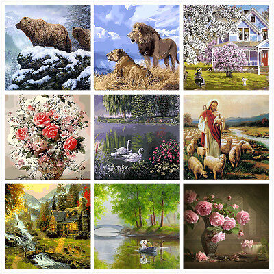DIY Painting By Number Kit Canvas 40*50cm S3 AU STOCK 81108162 HOME DECOR