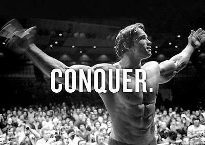 ARNOLD SCHWARZENEGGER POSTER Conquer Pumping Iron Bodybuilding Gym Weights A4 A3