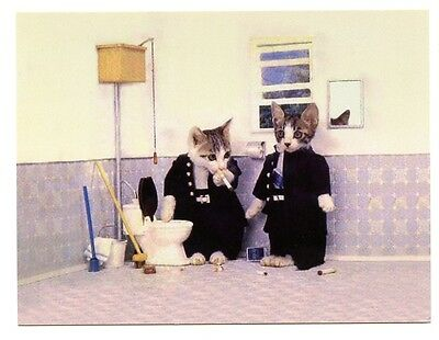 modern cat postcard dressed boy cats smoking in the bathroom CAT CHARITY