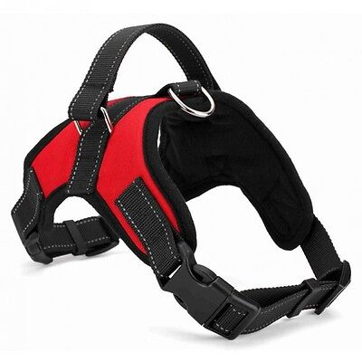 Dog Supplies Soft Adjustable Harness Large Dog Walk Harness Vest Collar (INT)