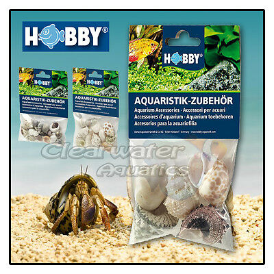 Hobby NATURAL HERMIT CRAB SEA SHELLS SET Jumbo Variety Marine Reef Fish Aquarium