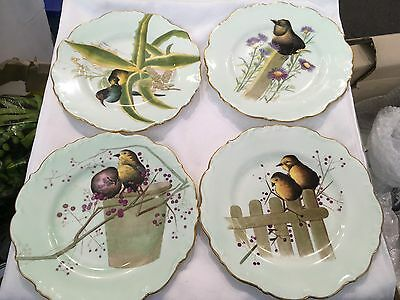 RARE Antique CAULDON CABINET plates with hand painted flowers and birds X4
