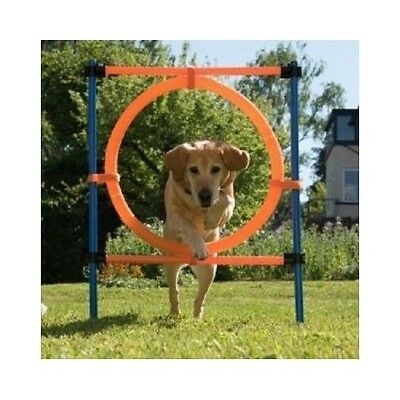 Dog Agility Equipment Jumping Hoop Training Obstacle Course Fitness Obedience