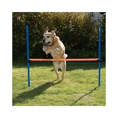 Dog Agility Hurdle Equipment Jumps Training Obstacle Course Set Kit Obedience