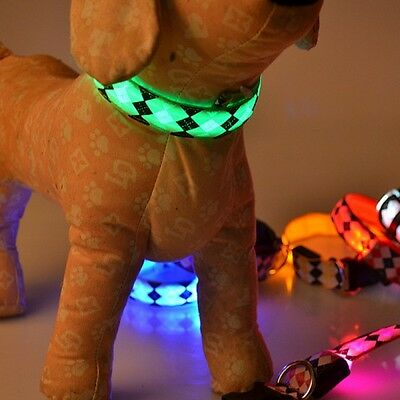 LED Light Up Dog Collar Pets Glow Flash Artículos Para Animales Perros Collares