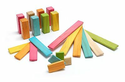 22 Piece Tegu Discovery Set Magnetic Wooden Block, Tints