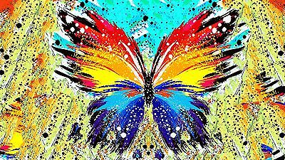 Splatter Paint Butterfly Abstract Ar / High Quality Canvas home wall art & Decor