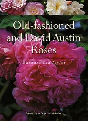 Old-Fashioned and David Austin Roses By Barbara Lea Taylor