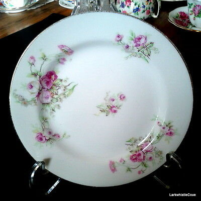 "S M Limoges Elite Works 1896-1920 Pink Roses Green Leaf 6 1/8"" Bread Plate"