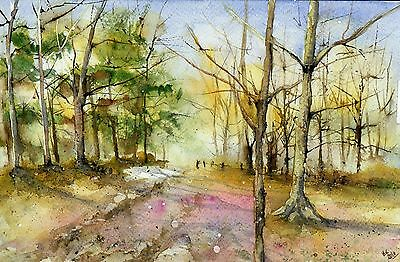 "○°Original Aquarell,Watercolor, Wald,Landschaft,Wood""°○"