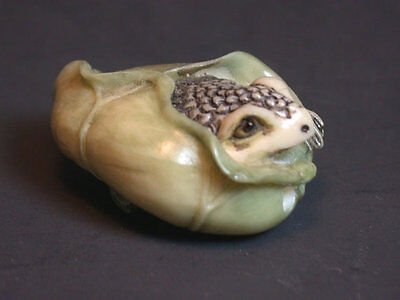 OLD Japanese Ivory colored Bone Netsuke- Baby FROG Wrapped in Lotus Leaf