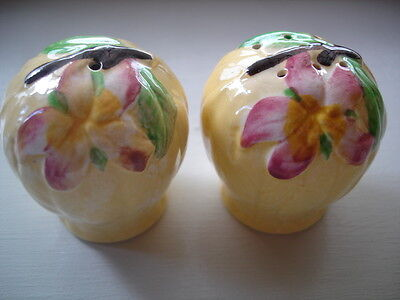 ANTIQUE VINTAGE CARLTON WARE CRUET pieces SALT AND PEPPER YELLOW APPLE BLOSSOM